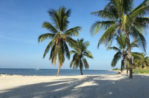 Sannysideoflife_10 Tipps für die Florida Rundreise_Smathers Beach